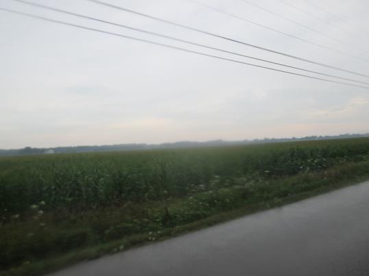 20120724-190731.jpg